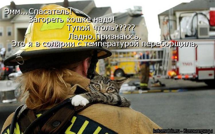 Котоматрица: Эмм...Спасатель! Загореть кошке надо! Тупой чтоль????? Ладно.Признаюсь. Это я в солярии с температурой переборщила,