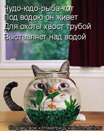 Котоматрица: Чудо-юдо-рыба-кот Под водою он живет Для охоты хвост трубой Выставляет над водой