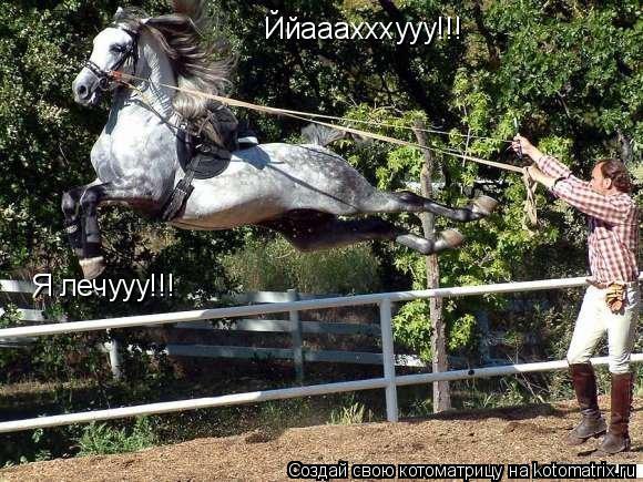 Котоматрица: Ййааахххууу!!! Я лечууу!!!
