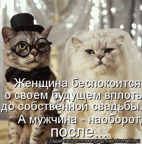 Котоматрица: Женщина беспокоится  о своем будущем вплоть до собственной свадьбы. А мужчина, наоборот, после.  до собственной свадьбы. А мужчина, наоборот,