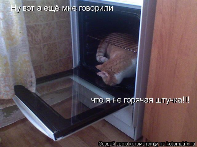 Котоматрица: Ну вот а ещё мне говорили  что я не горячая штучка!!!