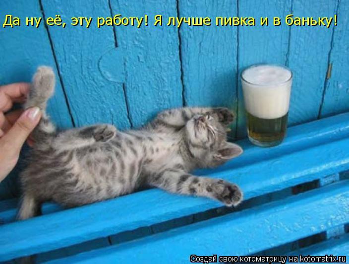 Котоматрица: Да ну её, эту работу! Я лучше пивка и в баньку!
