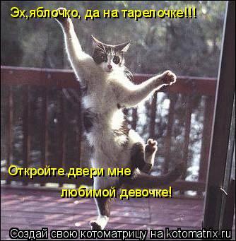 Котоматрица: Эх,яблочко, да на тарелочке!!! Откройте двери мне любимой девочке!