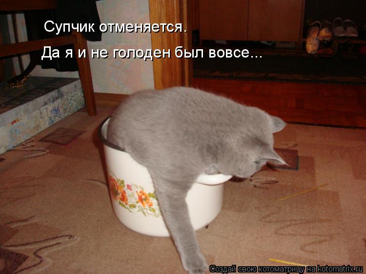 Котоматрица: Супчик отменяется. Супчик отменяется. Да я и не голоден был вовсе...