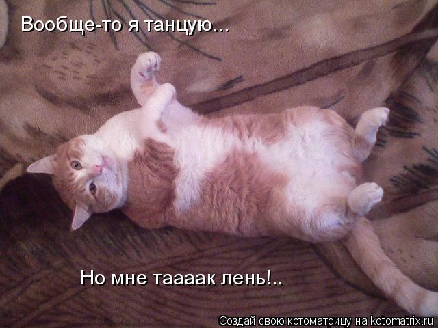 Котоматрица: Вообще-то я танцую... Но мне таааак лень!..