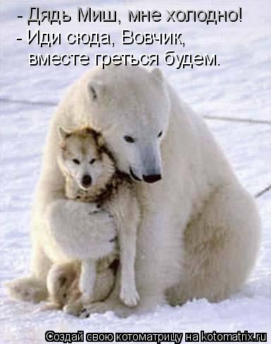 Котоматрица: - Дядь Миш, мне холодно! - Иди сюда, Вовчик, вместе греться будем.