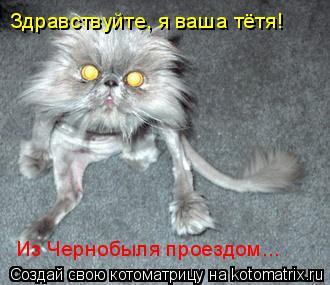 Котоматрица: Здравствуйте, я ваша тётя! Из Чернобыля проездом...