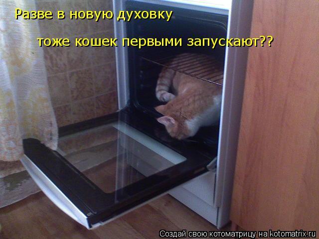 Котоматрица: Разве в новую духовку тоже кошек первыми запускают?? Разве в новую духовку