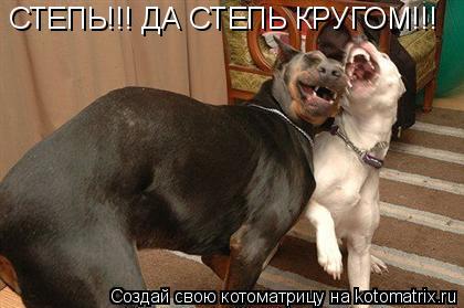 Котоматрица: СТЕПЬ!!! ДА СТЕПЬ КРУГОМ!!!