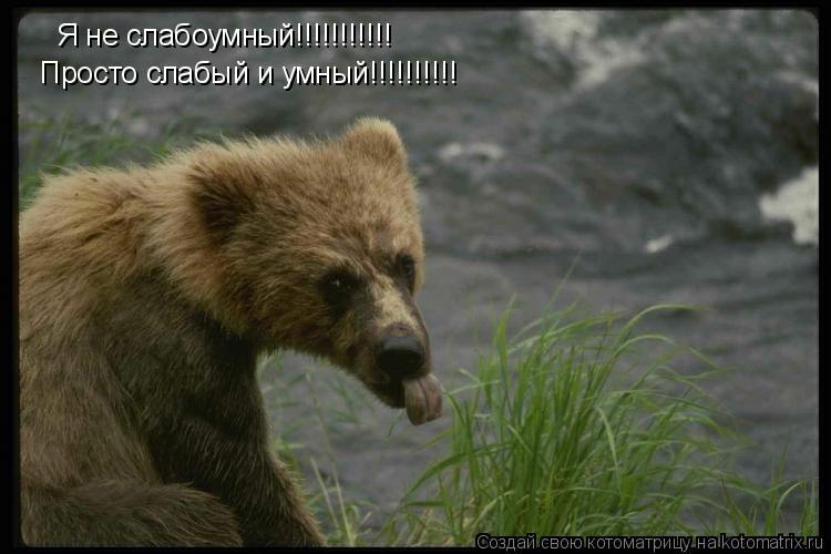 Котоматрица: Я не слабоумный!!!!!!!!!!! Просто слабый и умный!!!!!!!!!!