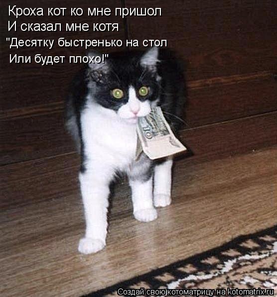 """Котоматрица: Кроха кот ко мне пришол И сказал мне котя """"Десятку быстренько на стол Или будет плохо!"""""""