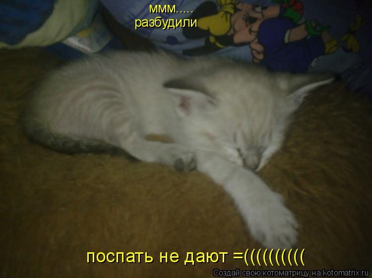 Котоматрица: ммм..... разбудили поспать не дают =((((((((((