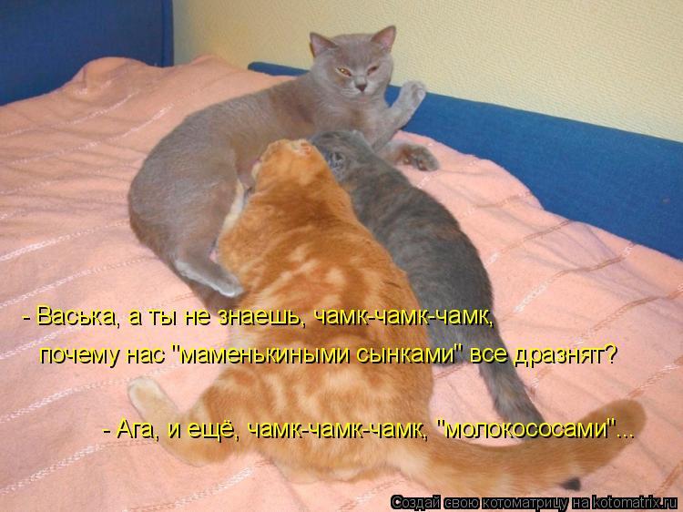 http://kotomatrix.ru/images/lolz/2009/06/01/z9O.jpg