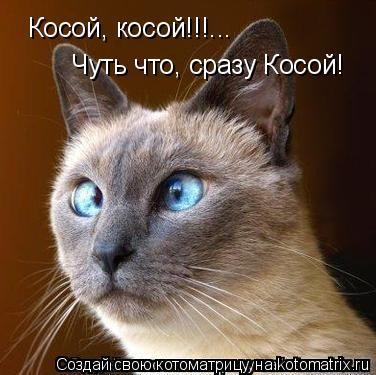 Котоматрица: Косой, косой!!!...Чуть что, сразу Косой!  Косой, косой!!!... Чуть что, сразу Косой!