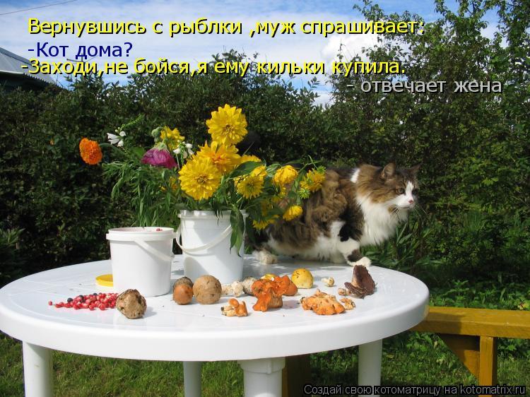 Котоматрица: Вернувшись с рыблки ,муж спрашивает: -Кот дома? -Заходи,не бойся,я ему кильки купила.  - отвечает жена