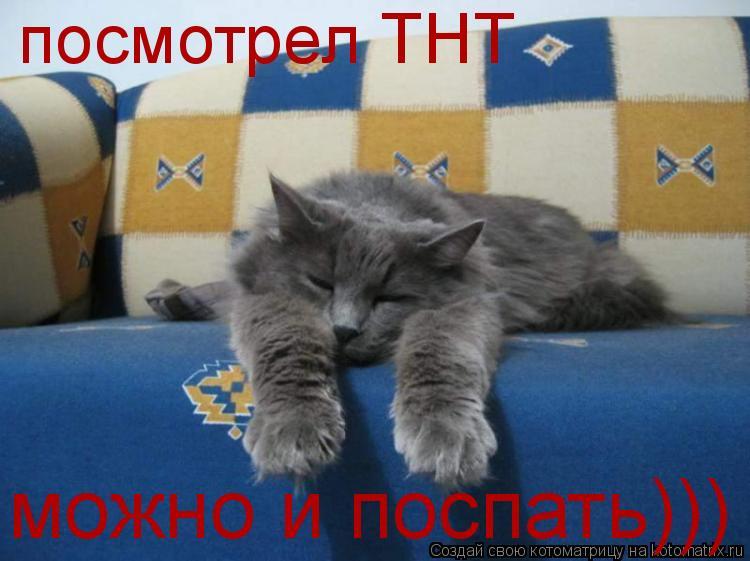 Котоматрица: посмотрел ТНТ можно и поспать)))