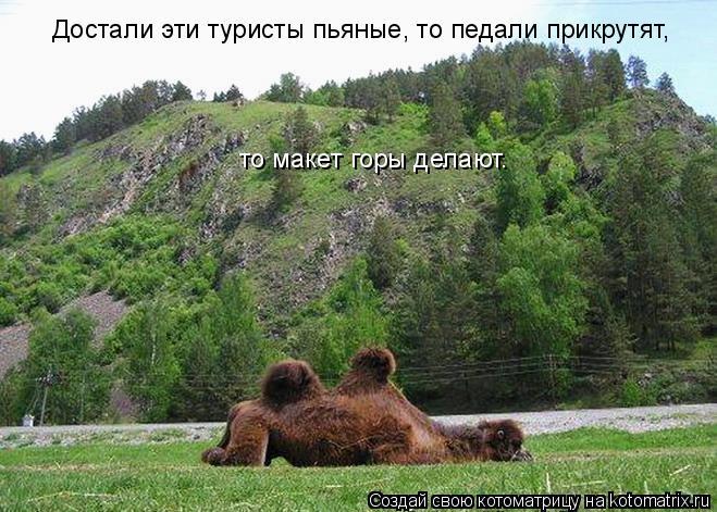Котоматрица: Достали эти туристы пьяные, то педали прикрутят,  то макет горы делают.