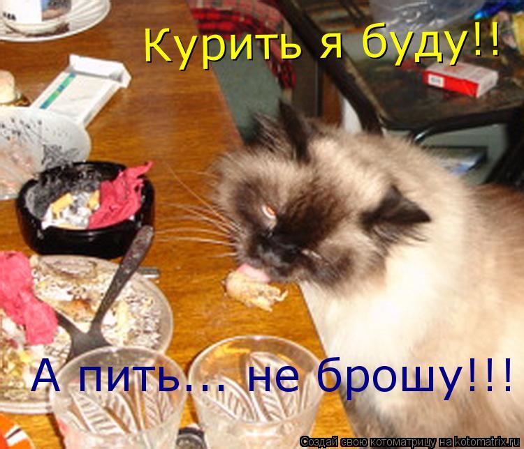 Котоматрица: Курить я буду!! А пить... не брошу!!!