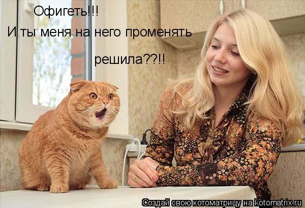 Котоматрица: Офигеть!!! И ты меня на него променять  решила??!!