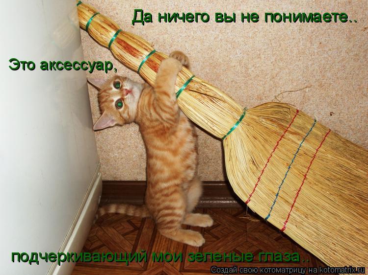 Котоматрица: Да ничего вы не понимаете.. Да ничего вы не понимаете.. Это аксессуар, подчеркивающий мои зеленые глаза..