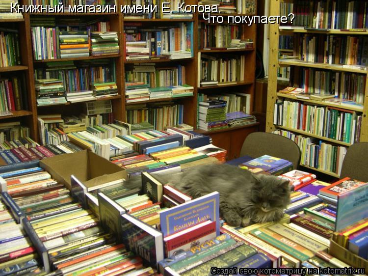 Котоматрица: Книжный магазин имени Е. Котова. Что покупаете?