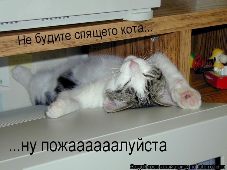 Котоматрица: Не будите спящего кота... ...ну пожаааааалуйста