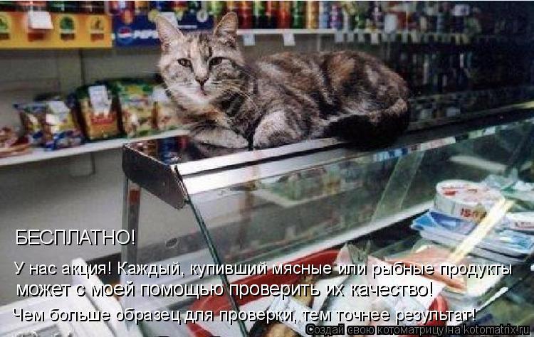 Котоматрица: У нас акция! Каждый, купивший мясные или рыбные продукты Чем больше образец для проверки, тем точнее результат! может с моей помощью провери