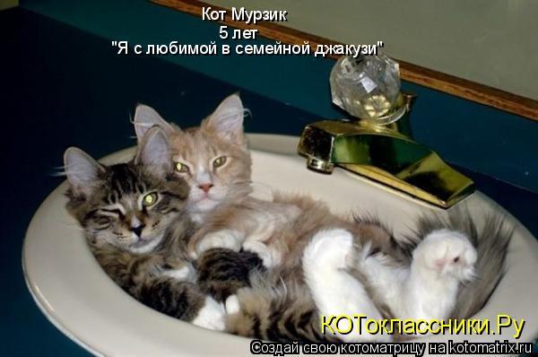 """Котоматрица: Кот Мурзик 5 лет """"Я с любимой в семейной джакузи"""" КОТоклассники.Ру"""