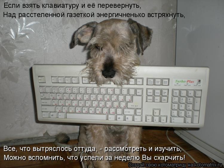 Котоматрица: Если взять клавиатуру и её перевернуть, Над расстеленной газеткой энергичненько встряхнуть, Можно вспомнить, что успели за неделю Вы схарч