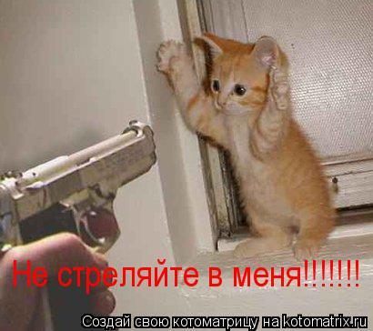 Котоматрица: Не стреляйте в меня!!!!!!!