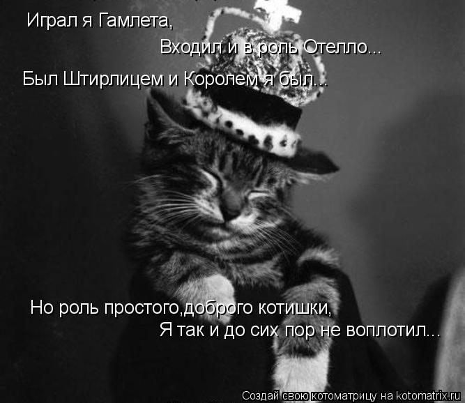 Котоматрица: Играл я Гамлета, Входил и в роль Отелло... Был Штирлицем и Королем я был... Но роль простого,доброго котишки, Я так и до сих пор не воплотил...
