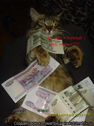Котоматрица: да... вот я богатый :) кому чеивых??? мне! и мне! про меня не забуте!!!