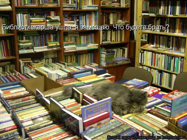 Котоматрица: Библиоткекарша ушла, я замещаю. Что будете брать?