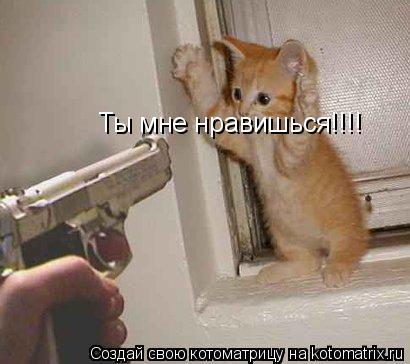 Котоматрица: Ты мне нравишься!!!!