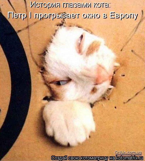 Котоматрица: История глазами кота: Петр I прогрызает окно в Европу