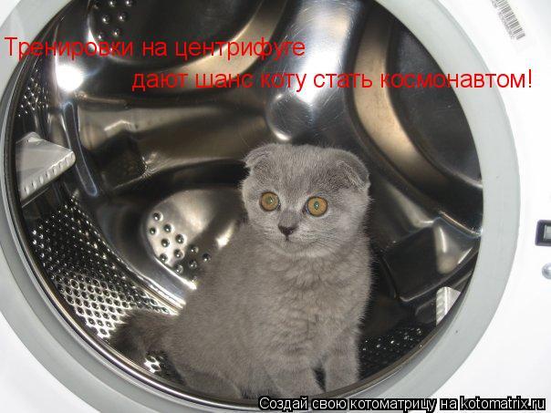 Котоматрица: Тренировки на центрифуге дают шанс коту стать космонавтом!