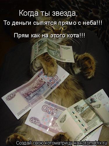 Котоматрица: Когда ты звезда, То деньги сыпятся прямо с неба!!! Прям как на этого кота!!!
