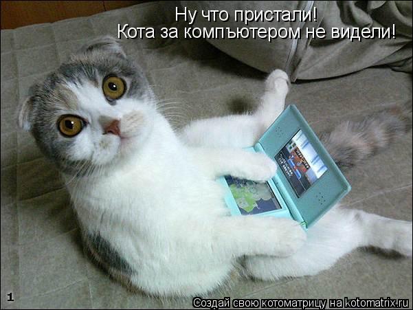 Котоматрица: Ну что пристали! Кота за компъютером не видели! Ну что пристали!  Кота за компъютером не видели!