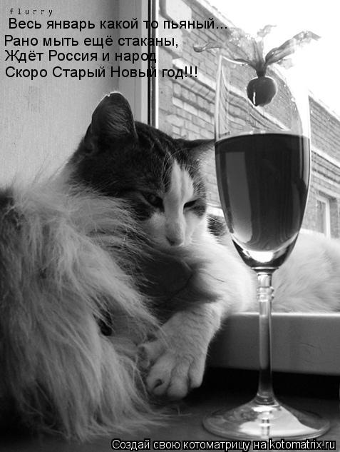 Котоматрица: Весь январь какой то пьяный... Рано мыть ещё стаканы, Ждёт Россия и народ Скоро Старый Новый год!!!