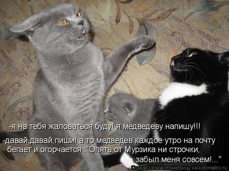 Котоматриця!)))) - Страница 4 Db
