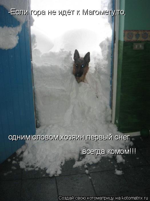 Котоматрица: -Если гора не идёт к Магомету,то,  одним словом,хозяин,первый снег   всегда комом!!!