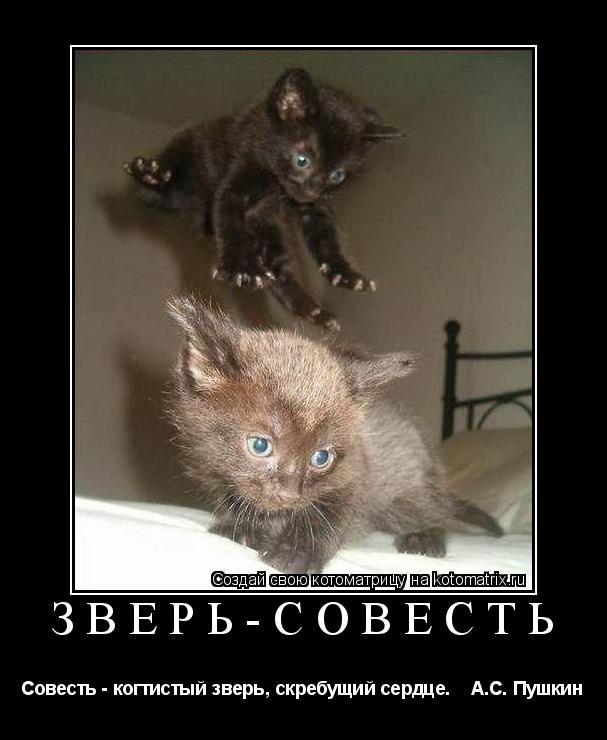 Котоматрица: Зверь-совесть Совесть - когтистый зверь, скребущий сердце.    А.С. Пушкин