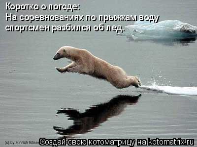 Котоматрица: Коротко о погоде: На соревнованиях по прыжкам воду спортсмен разбился об лед.