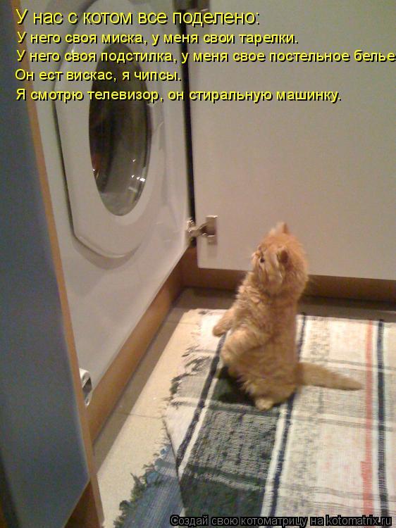 Котоматрица: У нас с котом все поделено: У него своя миска, у меня свои тарелки. У него своя подстилка, у меня свое постельное белье. Он ест вискас, я чипсы.