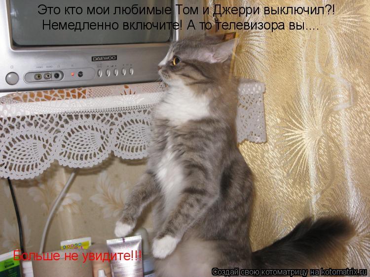 Котоматрица: Это кто мои любимые Том и Джерри выключил?! Немедленно включите! А то телевизора вы.... .. Больше не увидите!!!