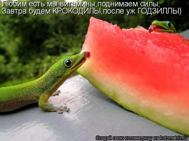 Котоматрица: Любим есть мы витамины,поднимаем силы, Завтра будем КРОКОДИЛЫ,после уж ГОДЗИЛЛЫ)