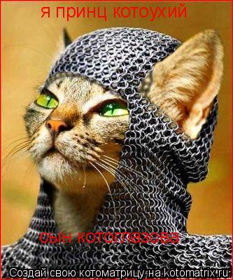 Котоматрица: я принц котоухий сын котоглазова