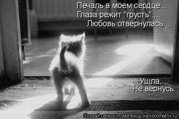 """Котоматрица: Печаль в моем сердце... Глаза режит """"грусть"""".... Любовь отвернулась.... Ушла. Не вернусь."""