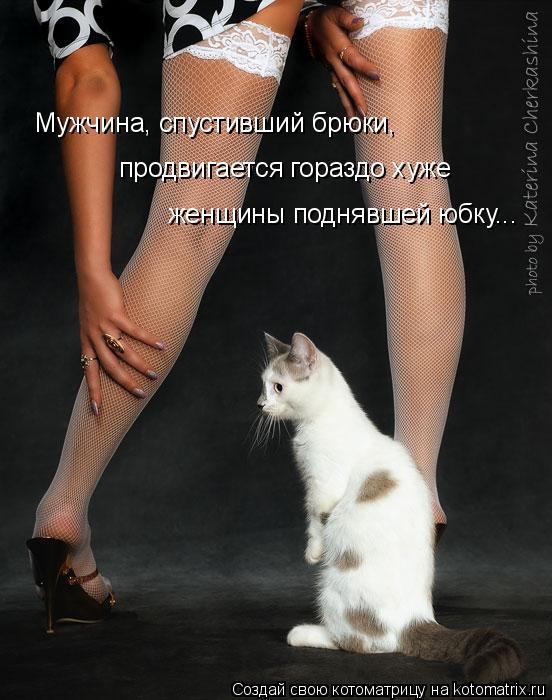 Котоматрица: Мужчина, спустивший брюки,  продвигается гораздо хуже  женщины поднявшей юбку...