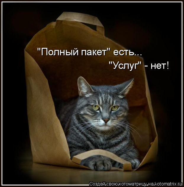 """Котоматрица: """"Полный пакет"""" есть... """"Услуг"""" - нет!"""